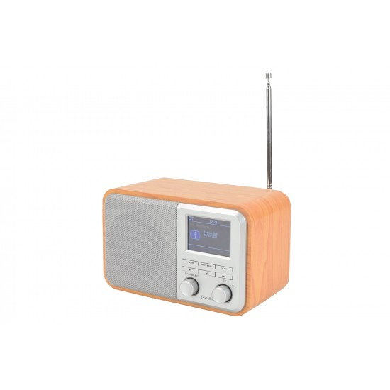 Radio Digitale Ricaricabile DAB+ con Bluetooth e Display a Colori - Silver