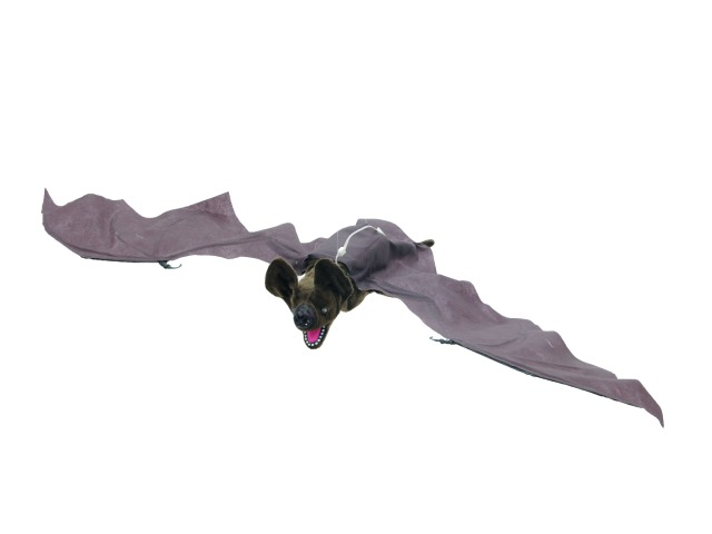 Halloween Moving Bat, animated