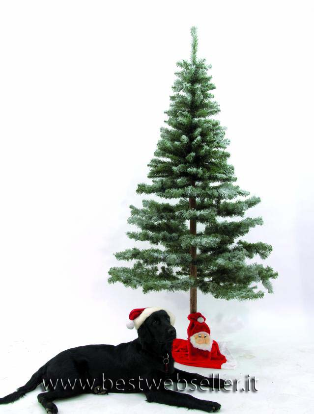 Abete albero,natural trunk snow-flocked 180cm