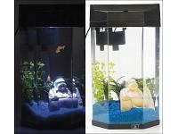 Acquario completo di luce led pompa motore filtro biosfera for Acquario completo prezzi